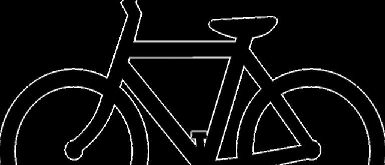 Article : Journal intime d'un vélo (1)