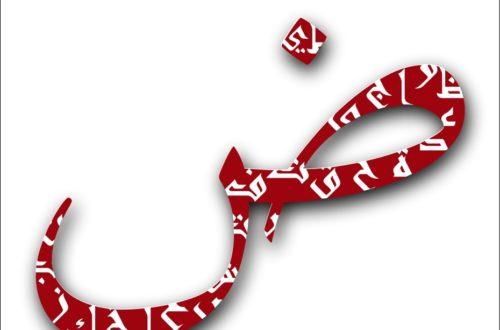Article : L'arabe: ma langue maternelle et pas seulement